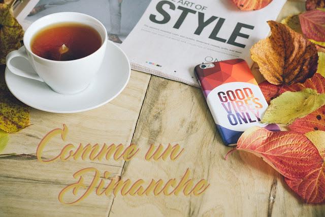 https://www.laplanquealibellules.fr/2018/01/comme-un-dimanche-10.html/