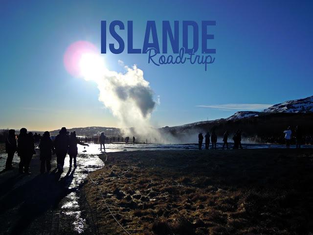 https://www.laplanquealibellules.fr/2018/05/road-trip-en-islande-2.html/